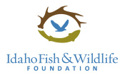 for Idaho fishing license online